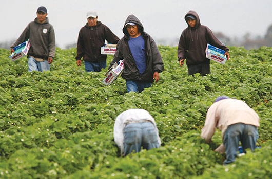 Miles de hispanos se beneficiarán