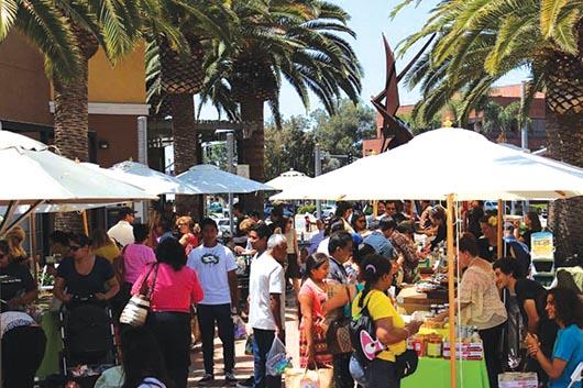 Mother's Market celebra su 36avo. Aniversario