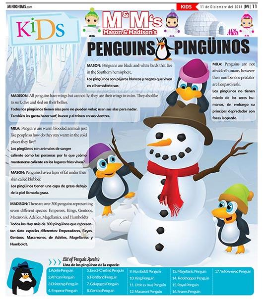 Penguins/Pingüinos
