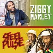 8-13-14-Ziggy-SteelPulse-175x175-date