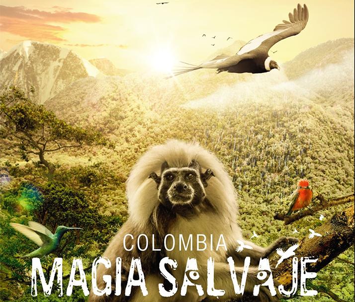 «Colombia: Magia Salvaje» aterrizó en Los Angeles